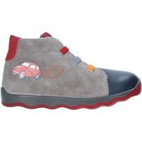 kengät Lapset Bootsit Primigi 4359400 Harmaa