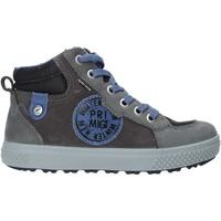 kengät Lapset Bootsit Primigi 4392333 Harmaa