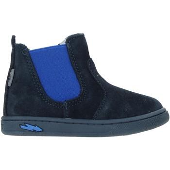 kengät Lapset Bootsit Primigi 4404200 Sininen