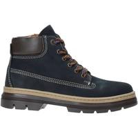 kengät Lapset Bootsit Primigi 4415111 Sininen