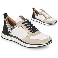 kengät Naiset Sandaalit ja avokkaat Adige VANILLE V5 PYTHON ICE Valkoinen