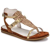 kengät Naiset Sandaalit ja avokkaat Regard BAZUR2 Ruskea