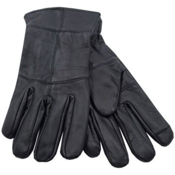 Asusteet / tarvikkeet Miehet Hanskat Heatguard  Black