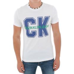vaatteet Miehet Lyhythihainen t-paita Calvin Klein Jeans J30J313241 112 WHITE Blanco