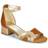 kengät Naiset Sandaalit ja avokkaat Sweet CHINOS Kamelinruskea