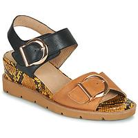 kengät Naiset Sandaalit ja avokkaat Sweet ETOXYS Musta / Kamelinruskea