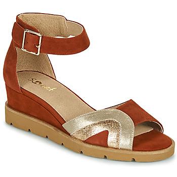 kengät Naiset Sandaalit ja avokkaat Sweet ETUVESS Viininpunainen / Kulta