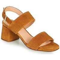 kengät Naiset Sandaalit ja avokkaat Fericelli CROSTA Kamelinruskea