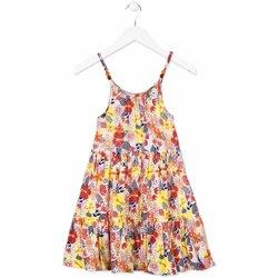 vaatteet Tytöt Lyhyt mekko Losan 814-7028AB Oranssi