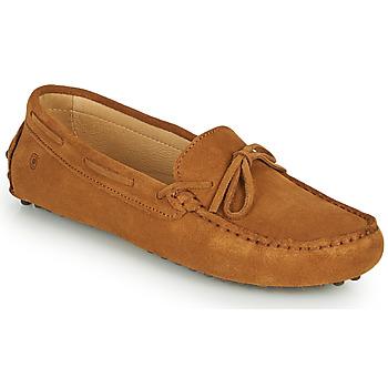 kengät Naiset Mokkasiinit Casual Attitude ODELLE Ruskea