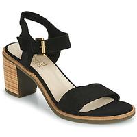 kengät Naiset Sandaalit ja avokkaat Casual Attitude CAILLE Musta