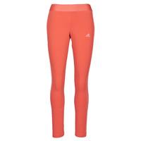 vaatteet Naiset Legginsit adidas Performance W 3S LEG Punainen