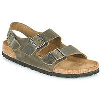 kengät Miehet Sandaalit ja avokkaat Birkenstock MILANO Khaki