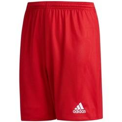 vaatteet Pojat Shortsit / Bermuda-shortsit adidas Originals JR Parma 16 Punainen