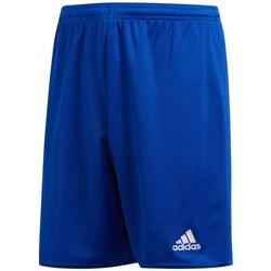 vaatteet Pojat Shortsit / Bermuda-shortsit adidas Originals JR Parma 16 Vaaleansiniset