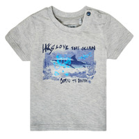 vaatteet Pojat Lyhythihainen t-paita Ikks XS10031-24 Harmaa