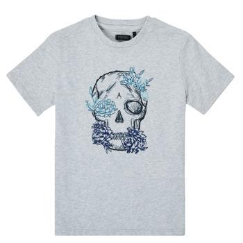 vaatteet Pojat Lyhythihainen t-paita Ikks XS10243-21-C Harmaa
