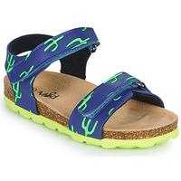 kengät Pojat Sandaalit ja avokkaat Mod'8 KOURTIS Sininen / Vihreä