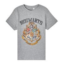 vaatteet Lapset Lyhythihainen t-paita TEAM HEROES  HARRY POTTER Grey
