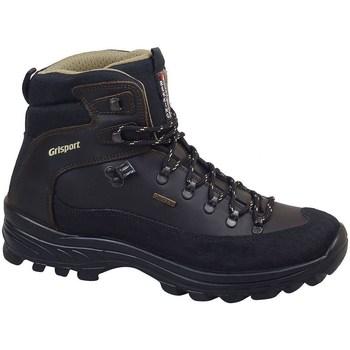 kengät Miehet Vaelluskengät Grisport 10248D116G Mustat