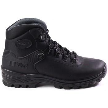 kengät Miehet Vaelluskengät Grisport 10242D71G Mustat