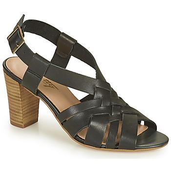 kengät Naiset Sandaalit ja avokkaat Betty London OCHAT Musta