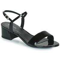 kengät Naiset Sandaalit ja avokkaat Minelli VERINA Musta