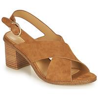 kengät Naiset Sandaalit ja avokkaat Minelli CASIMIERA Ruskea