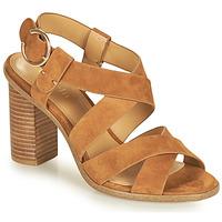 kengät Naiset Sandaalit ja avokkaat Minelli CLAVIA Ruskea