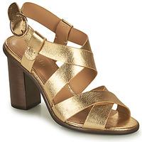 kengät Naiset Sandaalit ja avokkaat Minelli THIYA Kulta