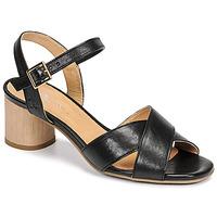 kengät Naiset Sandaalit ja avokkaat Dream in Green ODAINE Musta