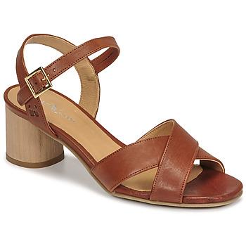 kengät Naiset Sandaalit ja avokkaat Dream in Green ODAINE Ruskea