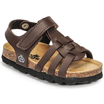 kengät Pojat Sandaalit ja avokkaat Citrouille et Compagnie JANISOL Ruskea / Fonce