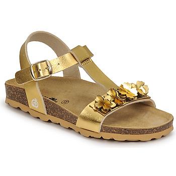 kengät Tytöt Sandaalit ja avokkaat Citrouille et Compagnie KAPIBA Kulta