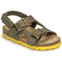 kengät Pojat Sandaalit ja avokkaat Citrouille et Compagnie KELATU Khaki
