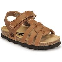kengät Pojat Sandaalit ja avokkaat Citrouille et Compagnie JANISOL Ruskea