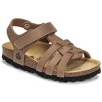 kengät Pojat Sandaalit ja avokkaat Citrouille et Compagnie JANISOL Ruskea / Taupe