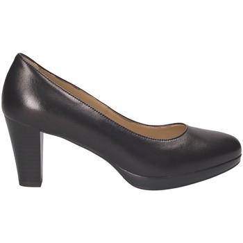 kengät Naiset Korkokengät Nero Giardini P805010D Musta