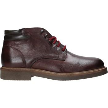 kengät Miehet Bootsit Exton 852 Muut
