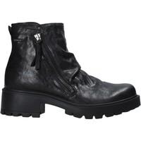 kengät Naiset Bootsit IgI&CO 6160000 Musta