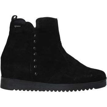 kengät Naiset Bootsit IgI&CO 6155033 Musta