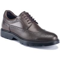 kengät Miehet Derby-kengät Lumberjack SM67212 002 B01 Ruskea