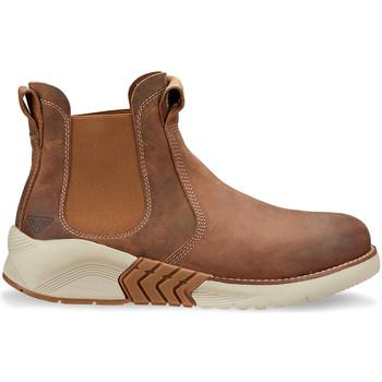 kengät Miehet Bootsit Docksteps DSM105601 Ruskea