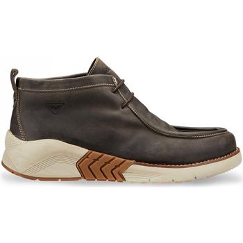 kengät Miehet Bootsit Docksteps DSM105803 Ruskea