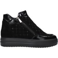 kengät Naiset Bootsit IgI&CO 6155800 Musta