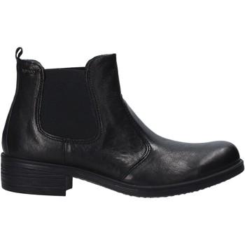 kengät Naiset Bootsit IgI&CO 6158500 Musta