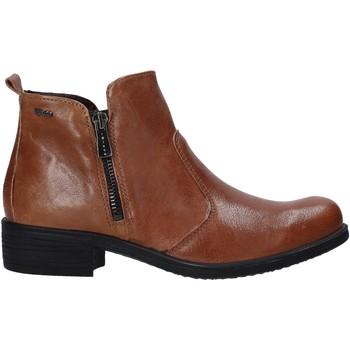 kengät Naiset Sandaalit ja avokkaat IgI&CO 6158711 Ruskea