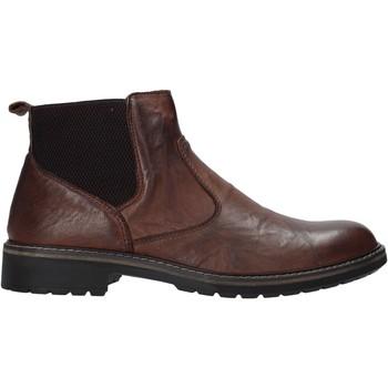 kengät Miehet Bootsit IgI&CO 6108711 Ruskea