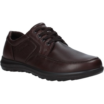 kengät Miehet Derby-kengät Enval 6216222 Ruskea