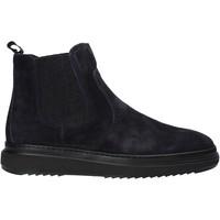 kengät Miehet Bootsit IgI&CO 6115611 Sininen